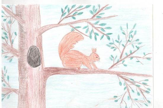 Краеведческая библиотека организовала конкурс рисунков о Выксе