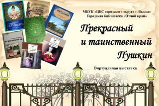 В рамках Литературной ночи «Отчий край» рассказал о писателях-юбилярах