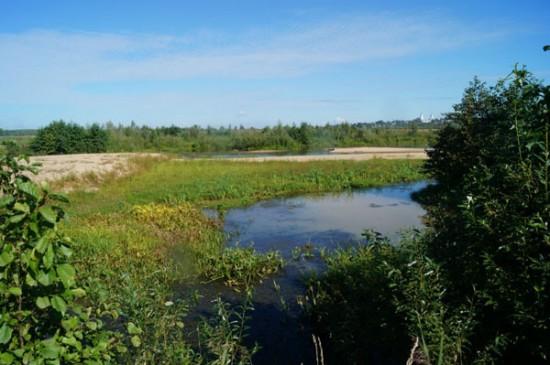 Наши даты: 1 августа – 20 лет со дня прорыва плотины Досчатинского пруда (2000)
