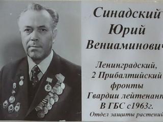 Юрий Синадский: Рядовой